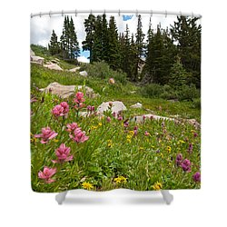 Shower Curtain featuring the photograph Rosy Paintbrush And Trees by Cascade Colors