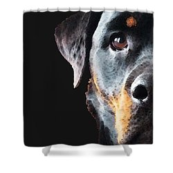 Rottie Love - Rottweiler Art By Sharon Cummings Shower Curtain by Sharon Cummings