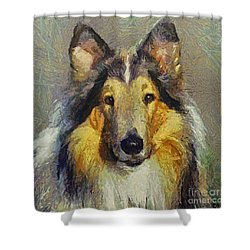 Rough Collie Shower Curtain