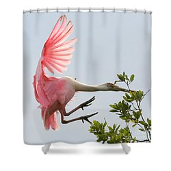 Rough Landing Shower Curtain