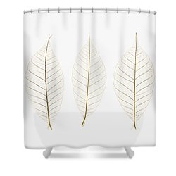 Row Of Leaves Shower Curtain by Kelly Redinger