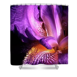 Royal Iris Shower Curtain