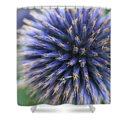 Royal Purple Scottish Thistle Shower Curtain