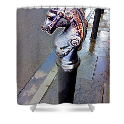 Royal Stroll Shower Curtain