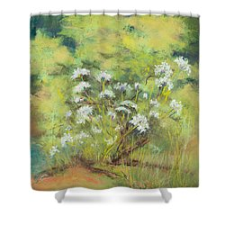 Royalty Shower Curtain by Lee Beuther