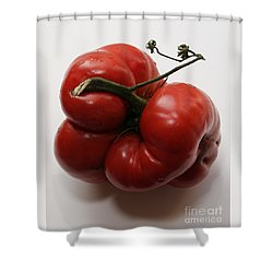 Shower Curtain featuring the photograph Roys Tomato by PJ Boylan