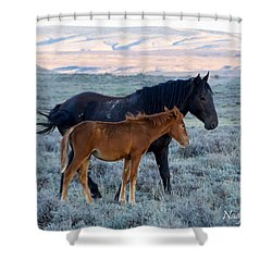 Ruby And Coal Of Sand Wash Basin Shower Curtain