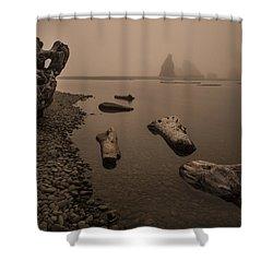 Ruby Beach Fog Shower Curtain