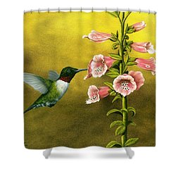 Ruby Throated Hummingbird And Foxglove Shower Curtain by Rick Bainbridge