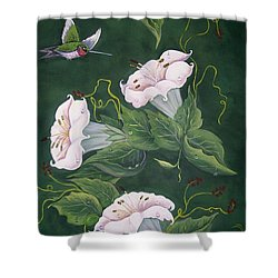 Hummingbird And Lilies Shower Curtain by Sharon Duguay