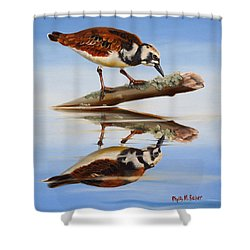 Shower Curtain featuring the painting Ruddy Reflection by Phyllis Beiser