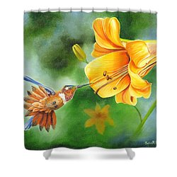 Shower Curtain featuring the painting Rufous Hummer And The Lily by Phyllis Beiser
