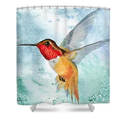 Da199 Rufous Humming Bird By Daniel Adams Shower Curtain