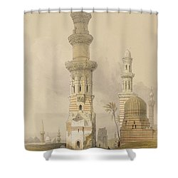 Ruined Mosques In The Desert Shower Curtain by David Roberts