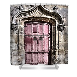 Ruins With Red Door Shower Curtain