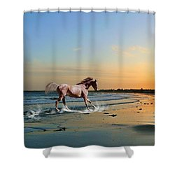 Run Like The Wind Shower Curtain