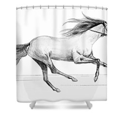 Runaway Shower Curtain