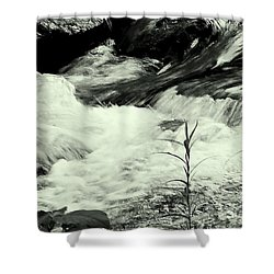 Runneth Over Shower Curtain by Tami Quigley