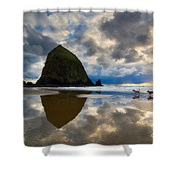 Running Free - Dogs Running In Beautiful Cannon Beach. Shower Curtain by Jamie Pham