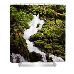 Running Wild Shower Curtain by Suzanne Luft