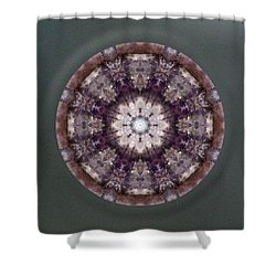 Runs With Wolves Shower Curtain