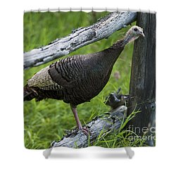 Rural Adventure Shower Curtain
