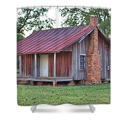 Shower Curtain featuring the photograph Rural Georgia Cabin by Gordon Elwell