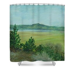 Rural Landscape Art Original Colorful Oil Painting Swan Lake Oregon  Shower Curtain by Elizabeth Sawyer
