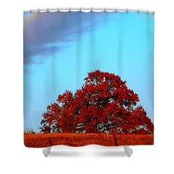 Rural Route Shower Curtain