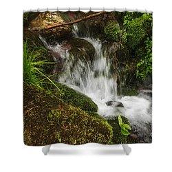 Rushing Mountain Stream And Moss Shower Curtain