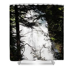 Rushing Through The Trees Shower Curtain