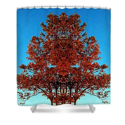 Shower Curtain featuring the photograph Rust And Sky 2 - Abstract Art Photo by Marianne Dow