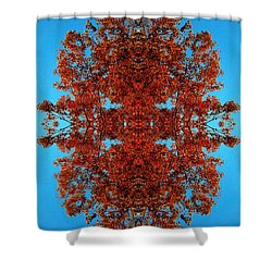Shower Curtain featuring the photograph Rust And Sky 4 - Abstract Art Photo by Marianne Dow