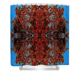 Shower Curtain featuring the photograph Rust And Sky 5 - Abstract Art Photo by Marianne Dow