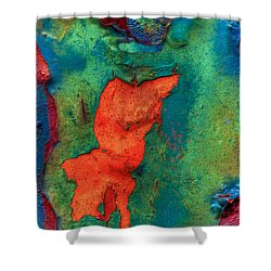 Shower Curtain featuring the photograph Rust Is Beautiful by Jerry Gammon