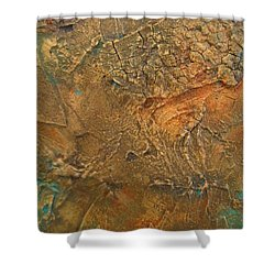 Rusty Day Shower Curtain