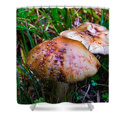 Rusty Mushroom Shower Curtain by Nick Kirby