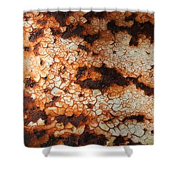 Shower Curtain featuring the photograph Rusty Post 4 by Mary Bedy