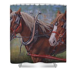 Rye And Whiskey Shower Curtain
