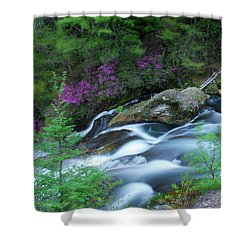 Ryuzu Ruminations Shower Curtain by Jonah  Anderson