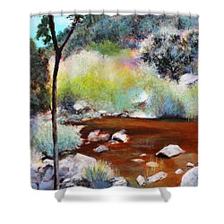 Sabino Canyon Scenes 2 Shower Curtain by M Diane Bonaparte