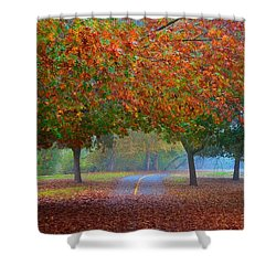 Sacramento River Bike Trail Shower Curtain