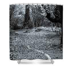 Sacramento River Walk At Turtle Bay Shower Curtain