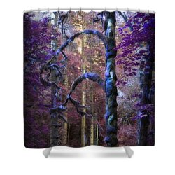 Sacred Forest Shower Curtain by Amanda Eberly-Kudamik