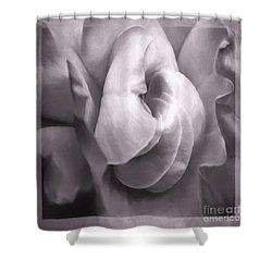 Shower Curtain featuring the photograph Sacred Rose by Jean OKeeffe Macro Abundance Art