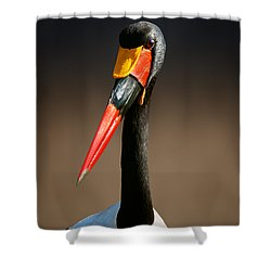 Saddle-billed Stork Portrait Shower Curtain