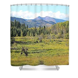 Shower Curtain featuring the photograph Saddle Mountain by Ann E Robson