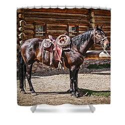 Saddled And Waiting Shower Curtain by Sue Smith