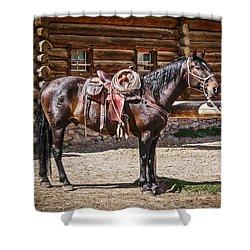 Saddled And Waiting Shower Curtain