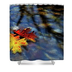Safe Passage Shower Curtain